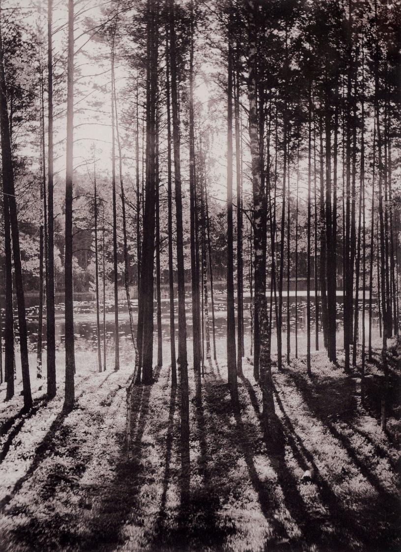 inha_i-k-_-_viii_punkaharju_1893