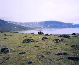 koivikko_kati_-_traktori_ja_lammasfar